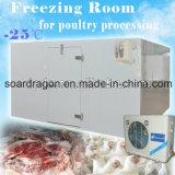 Sala de congeladores para armazenamento de peixe / carne montados por painéis com isolamento de poliuretano