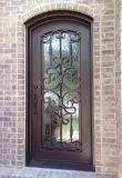 Классическая славная одиночная входная дверь утюга с Tempered стеклом
