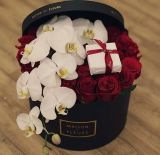 وسم أسود أو أخرى لون من أكريليكيّ [روس] صندوق مع غطاء, مع شركة علامة تجاريّة