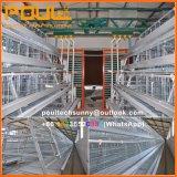 Galvanisierter Huhn-Bauernhof-Maschinerie-Batterie-Schicht-Rahmen mit automatischem