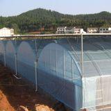 Коммерческие Multi-Span пластиковую пленку выбросов парниковых газов для выращивания овощей растет