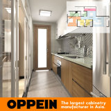 現代デザインカスタムラッカーホテル(OP15-HOUSE3)のための木の台所家具