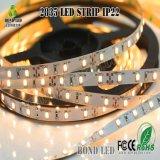 Tira de LEDS RGB LED, luces LED de cinta cuerda