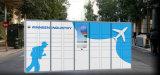 24 ore che funzionano l'armadio di bagagli intelligente per l'aeroporto