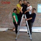 12steps de Ladder van het aluminium van de Ladder van het Metaal