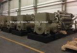 generador continuo del biogás del gas natural de la central eléctrica de 1000kw 1250kVA