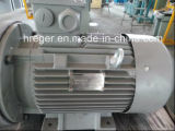 Ce Standard Hreger-CNC Fabricante Small Cold Extrusion Hydraulic Press 100t