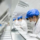 commercio all'ingrosso del comitato solare di 100W PV fatto nel Giappone per il sistema solare