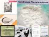 Poudre blanche de entassement en vrac 98% de Nandro Phenylpropionate de stéroïdes de cycle de CAS 62-90-8