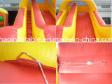 La tela incatramata superiore del PVC gonfiabile asciuga la trasparenza per l'adulto