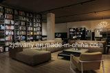 Neue Wohnzimmer-Leder-Sofa-Möbel der Art-2017 (D-80)
