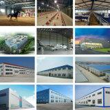 Almacén prefabricado del taller de la estructura de acero del palmo grande del edificio de las vigas de acero de la alta calidad