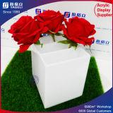 China-guter Preis kundenspezifischer Blumen-Vasen-Schaukarton