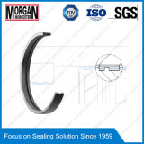 Profil de profil PTFE / Teflon / PA / POM Guide de piston Ring / Wear Ring
