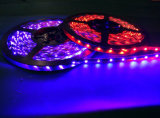 Striscia flessibile SMD5050 RGB, 60 LED di DC12V 24V LED per tester
