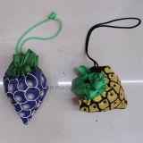PromotieZakken van de Milieubescherming van het fruit de Vouwbare