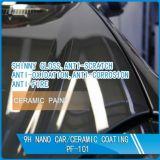 車体PF-101のためのNano陶磁器のNanoコーティング