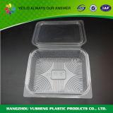 처분할 수 있는 투명한 플라스틱 과일 포장 상자