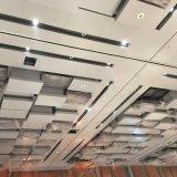 Plafond en aluminium personnalisé par métal artistique de modèle pour l'hôtel