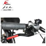 Alliage en aluminium 36V 250W Mini vélo pliant de batterie au lithium (JSL039S-5)