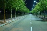 China-Hersteller-hohe Leistung alle in einem integrierten Solar-LED-Straßenlaterne, 120W 180W 240W integriertes Solarstraßenlaterne