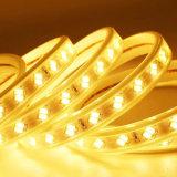 최신 판매 LED 지구 빛 SMD5050