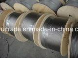 Câble de fil galvanisé de corde de fil d'acier pour l'exportation