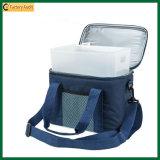 Kundenspezifische Picknick-Kühlvorrichtung-Beutel kühlere Isolierbeutel für im Freien (TP-CB378)
