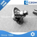 La precisión de engranaje helicoidal de latón y acero inoxidable rueda helicoidal