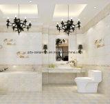 Keramik-Wand-Fliesen des Baumaterial-30X60-Super gute