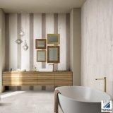 Azulejos de madera del suelo y de la pared del nuevo diseño
