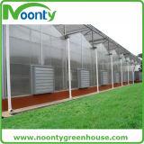 Agriculture/tente commerciale de feuille de PC avec le système de refroidissement
