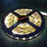 Indicatore luminoso di striscia di alta luminosità SMD3528 LED 120LEDs/M (CE, RoHS ha approvato)