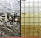 azulejo de cerámica de la pared del cuarto de baño de la inyección de tinta de 200X300m m