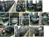 Qdx15-15-1.1 Dayuan elektrische versenkbare Wasser-Pumpen, 1.5HP (Anschluss 2.5inch)