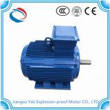 Ye3 3kw motor horizontal del motor eléctrico de la CA de 3 fases
