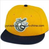 스포츠 Snapback 모자 (YYCM-120326)