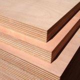 La película de la alta calidad hizo frente a la madera contrachapada para la construcción