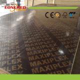 1220 * 2440 * 18mm Full Birch Core Film Faced Contraplacado Fabricante Desde China