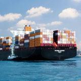 O melhor agente de frete do transporte do oceano de China a Aruba