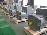 セリウム、ISOは承認した販売(JDG314C)のための200kw交流発電機を