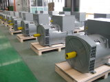 Ce, утвержденных ISO 200квт синхронный генератор переменного тока для генераторов (JDG314C)