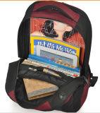 Laptop-Beutel mit hochwertigem auf Förderung (SB2128)