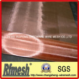 인광체 Bronze Wire Mesh 또는 Copper Wire Mesh/Phosphor Bronze Wire Cloth