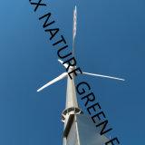 Nuovo di tecnologia avanzata della coda generatore di energia eolica di 20 chilowatt per uso durevole domestico