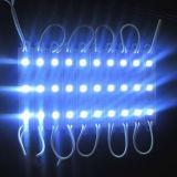 Indicatore luminoso giallo del modulo di SMD 5050*3 LED con approvazione di RoHS del Ce