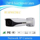 Dahua 12MP ИК-Ipc цифровая видеокамера CCTV (IPC-HFW81230E-Z)