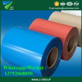 PPGL Folha de aço galvanizado revestido de cor na bobina