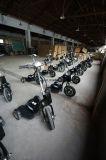 Der 3 Rad-gehen persönlicher Transport-Fahrzeug-Roller mit Drossel