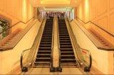 Escalator lourd d'intérieur de passager de construction